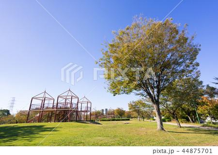 荒子川公園 44875701
