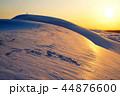 鳥取砂丘 砂丘 夕暮れの写真 44876600
