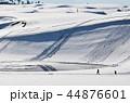 鳥取砂丘 砂丘 冬の写真 44876601