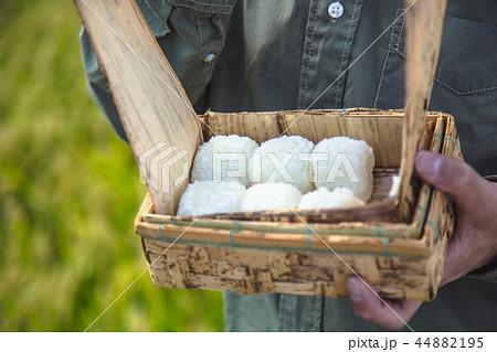 稲作農業 お米 44882195