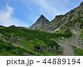 夏 北アルプス 山の写真 44889194