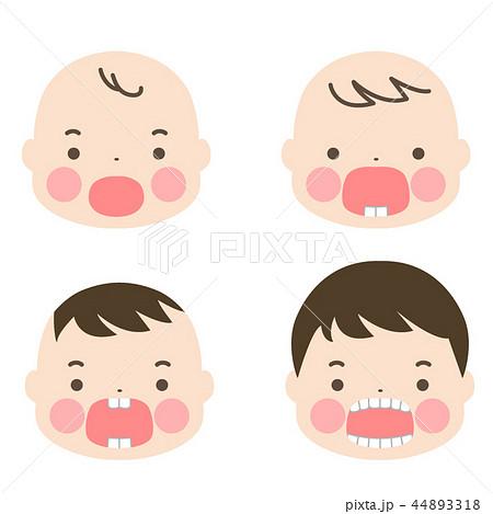赤ちゃん 乳歯が生えるまで 44893318