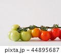 ミニトマト トマト プチトマトの写真 44895687