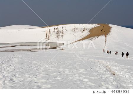 鳥取 四季の散歩 冬 鳥取砂丘 44897952