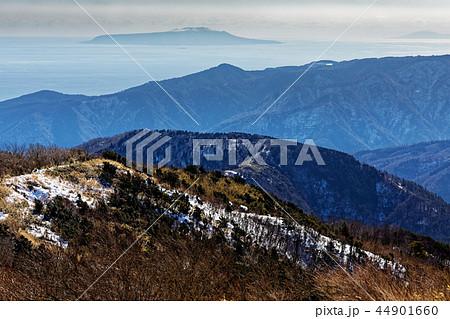 箱根・明神ヶ岳から見る明星ヶ岳への稜線と伊豆大島・三宅島 44901660