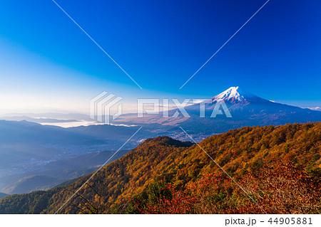 (山梨県)紅葉した三ツ峠山から望む、冠雪した富士山 44905881