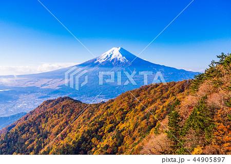(山梨県)紅葉した三ツ峠山から望む、冠雪した富士山 44905897