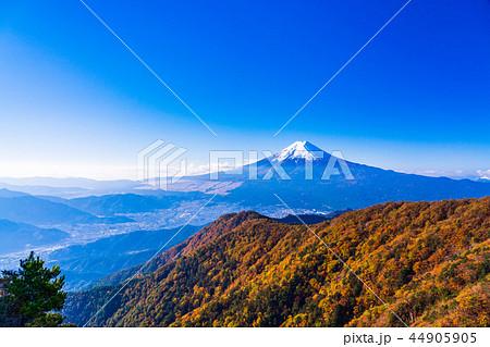 (山梨県)紅葉した三ツ峠山から望む、冠雪した富士山 44905905