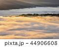 早朝 雲海 朝霧の写真 44906608