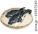 河豚 魚 笊のイラスト 44907540