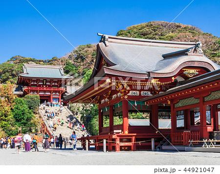 鎌倉 鶴岡八幡宮 本宮と舞殿 44921047