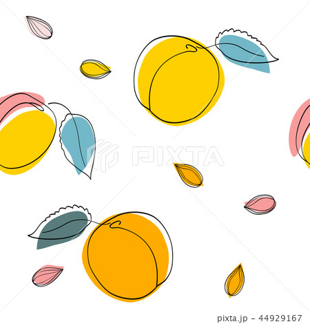 Seamless pattern Apricot fruits and seeds 44929167