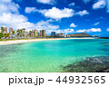 海 ダイヤモンドヘッド ビーチの写真 44932565