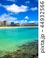 海 ダイヤモンドヘッド ビーチの写真 44932566