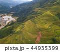 米 景色 風景の写真 44935399