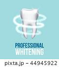歯 人体 口のイラスト 44945922