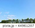 青空 空 雲の写真 44961207