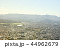札幌 44962679