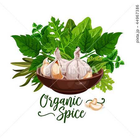 Organic spices and cooking herb ingredient poster 44967386