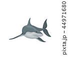 ベクトル サメ シャークのイラスト 44971680