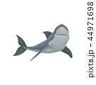 ベクトル サメ シャークのイラスト 44971698
