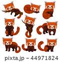 ぱんだ パンダ 動物のイラスト 44971824