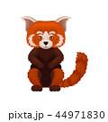 ぱんだ パンダ 動物のイラスト 44971830