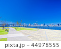 豊洲ぐるり公園 公園 風景の写真 44978555
