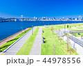 豊洲ぐるり公園 公園 風景の写真 44978556