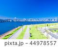 豊洲ぐるり公園 公園 風景の写真 44978557