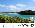 石垣島 川平湾 海の写真 44979442