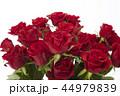 花瓶に飾った赤いバラ 44979839