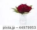 花瓶に飾った赤いバラ 44979953