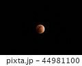 皆既月食 44981100