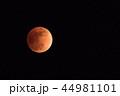 皆既月食 44981101