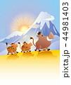猪 亥 年賀状のイラスト 44981403