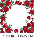 バラ 花 植物のイラスト 44989148