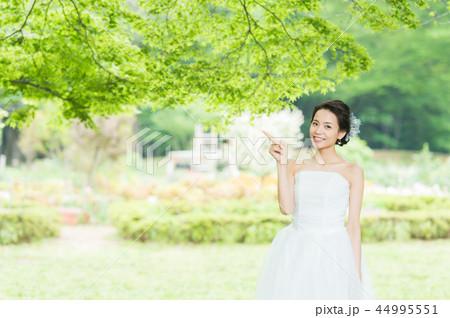 花嫁 ブライダルイメージ 44995551
