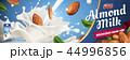 広告 アーモンド ハタンキョウのイラスト 44996856
