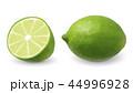 シトラス 柑橘 柑橘系のイラスト 44996928