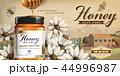 ハニーディッパー 養蜂所 広告のイラスト 44996987