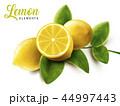 レモン 檸檬 くだもののイラスト 44997443