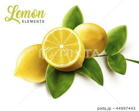 Lemon and green leaves elements 44997443
