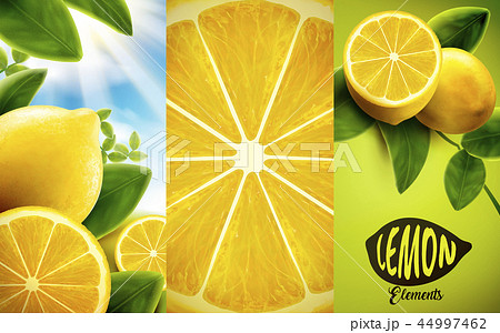 Lemon and green leaves elements 44997462