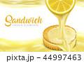 レモン 檸檬 フルーツのイラスト 44997463