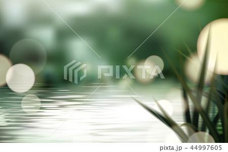 Bokeh lake or pond scene 44997605