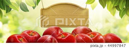 Natural fresh apple background 44997847