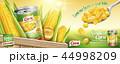 広告 缶詰の トウモロコシのイラスト 44998209
