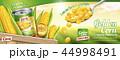 広告 宣伝 のぼりのイラスト 44998491