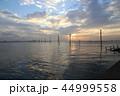 江川海岸 電柱 海の写真 44999558